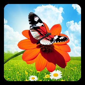 Spring Butterflies LWP