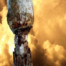A Strange Tree by Edward Gold - Digital Art Things ( digital photography, vibrant, strange tree, bright, yellow clouds, decorative, digital art )