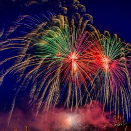 Celebration Times by Joseph Law - Public Holidays July 4th