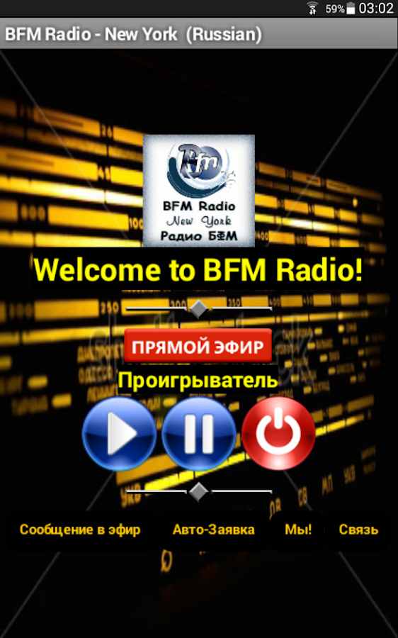 BFM Radio (Russian)- screenshot
