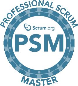 PSM I Logo