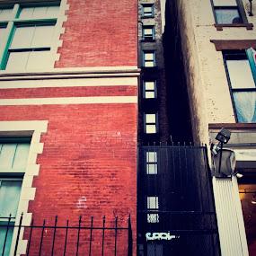 Cool alleyway entrance by Heather Hoppe - City,  Street & Park  Neighborhoods (  )