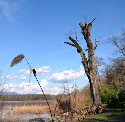 In Riva al Lago di RR27