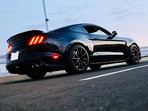 シェルビー GT350 のカスタム事例画像 Black Cobraさんの2019年11月03日07:42の投稿