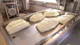 Mozzarella and the Cheeses of Campania, Italy