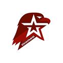 Юнармия icon
