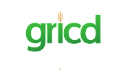 Gricd, Meet the founders, Black Founders Fund Africa, Google for Startups, Campus