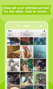ToolWiz Photos - Green Gallery v2.3