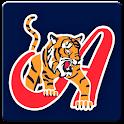 Es Beisbol - Tigres de Aragua icon