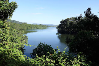 Photo: Scenic Daintree River. But. No swimming, it is RIFE with huge, aggressive salt water crocs.
