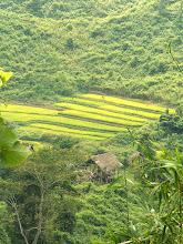 Photo: Luang Nam Tha - okolice / Around Luang Nam Tha
