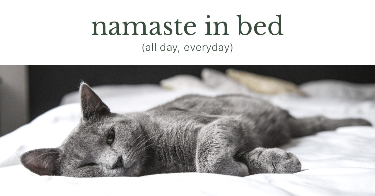 """Namaste In Bed, all day every day"" - Grey Cat Resting"