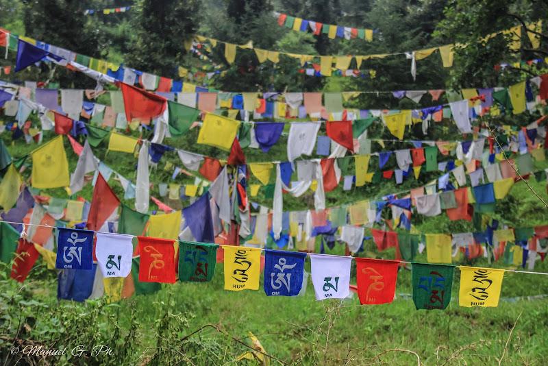 Mantra Flag di Manuel G. Ph.