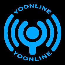 YoOnline Download on Windows