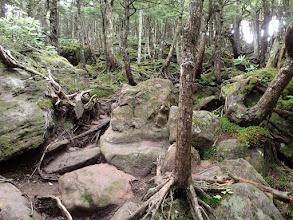 岩の道を登る
