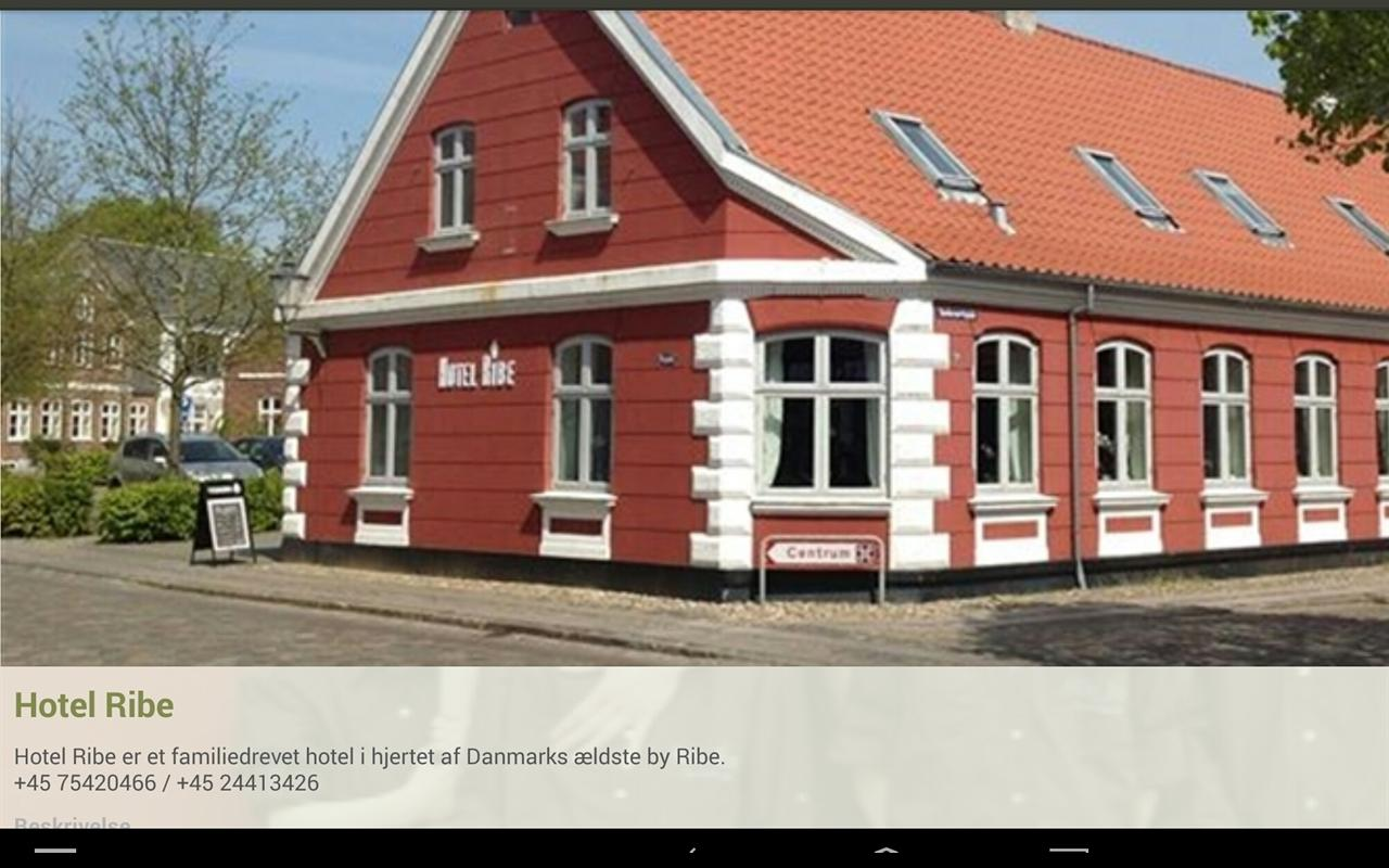 Hotel Ribe- screenshot