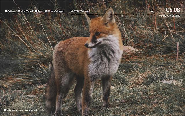 Fox Wallpaper HD New Tab Theme©
