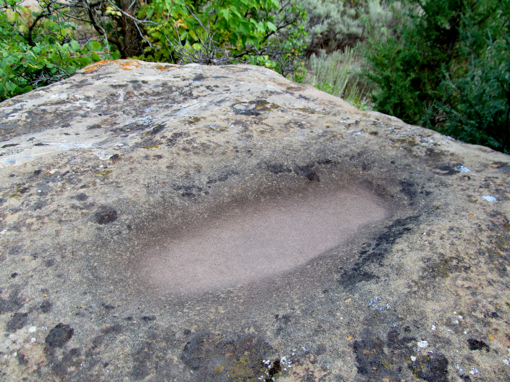 Photo: Possible metate in a boulder