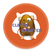 Clever Hamster