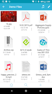 FE File Explorer Pro - Access PC, Mac and NAS Screenshot