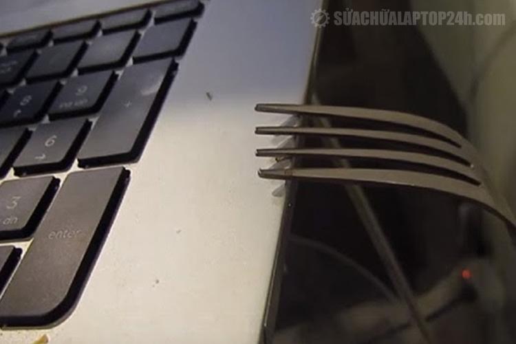 Cách bố trí vật dụng để kiến chạy ra khỏi laptop