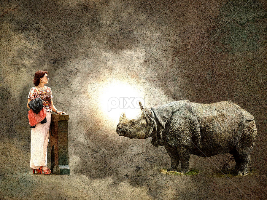 The Beauty and the Beast by Bjørn Borge-Lunde - Digital Art Abstract ( fantasy, woman, rhino, portrait )