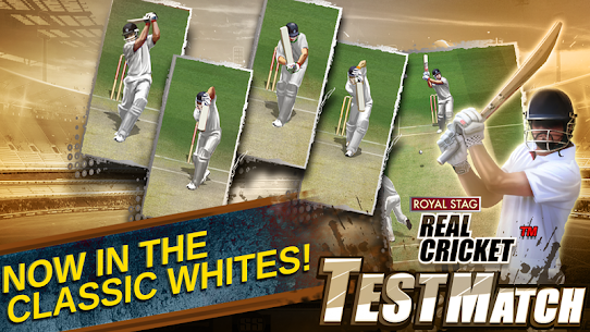 Real Cricket™ Test Match App Download For Android and iPhone 3
