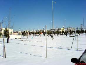 Photo: The Athens Olympic Village - Snows - Ιανουάριος 2006- Χιόνια 3