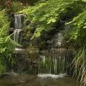 Charming waterfall icon