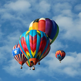 Up, Up, and Away by Maureen Rueffer - Transportation Other ( hot air balloon, sky, colorful, colors, festival, transportation,  )