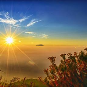 good morning world by Ferysetya Ma - Landscapes Sunsets & Sunrises