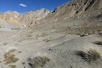 Photo: Remontée de la vallée de la Chhuchhu gompa khola