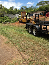 Photo: Workers turned the remaining stump into mulch which will be used in our Hope Garden and the Hawaiian Garden.