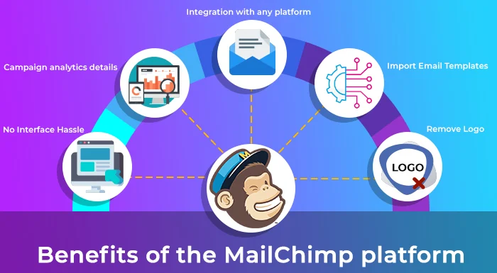 How to authenticate your website for mail chimp -Lia infrservice