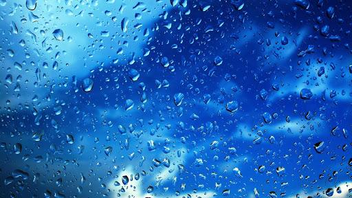 Rain. Live wallpaper