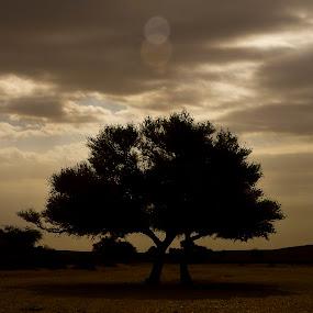 by Catalino Jr Baylon - Landscapes Travel