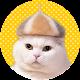 Wallpaper: Cats' Hair Hats (app)