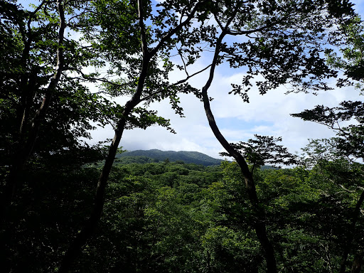 森山岳(奥の蓬莱山は雲の中)