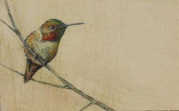"Photo: ""Hummingbird I"" ©2011 LMcNee 4x6 mixed media on board"