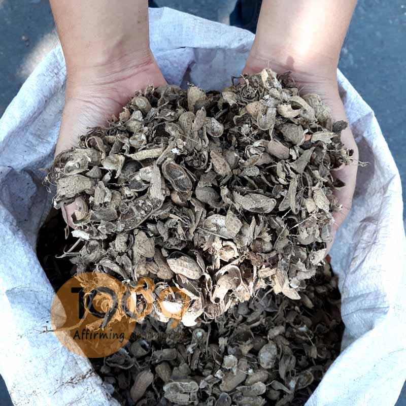 giá thể vỏ đậu phộng