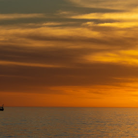 by Wilson Silverthorne - Landscapes Sunsets & Sunrises ( florida, beach, kids,  )