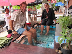 Photo: Year 2 Day 42 -  The Fish Pedicure Tub