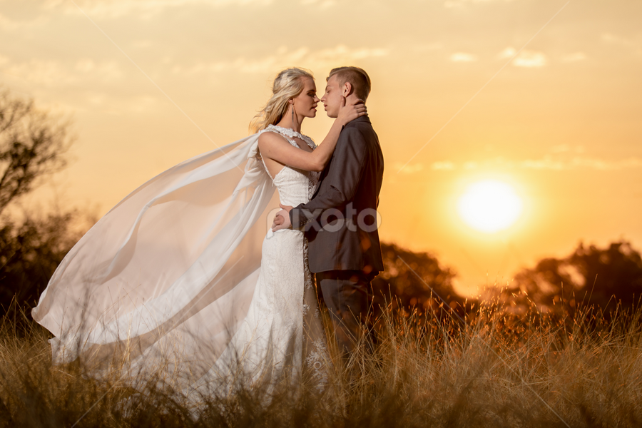 SA Sunset by Lood Goosen (LWG Photo) - Wedding Bride & Groom ( bride, love, wedding dress, couple, groom, wedding photographer, wedding photography, weddings, wedding day, wedding photographers, couples, brides, bride and groom, sunset, wedding )