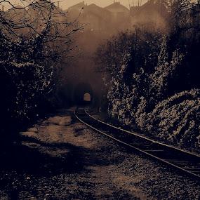 by Dalibor Davidovic - Digital Art Places ( railway, neighborhood, landscape, city, tunnel, #GARYFONGDRAMATICLIGHT, #WTFBOBDAVIS )