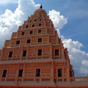 Tanjavur Palace by Saravanan Veeriah - Buildings & Architecture Public & Historical ( exterior, museum, palace, building. )