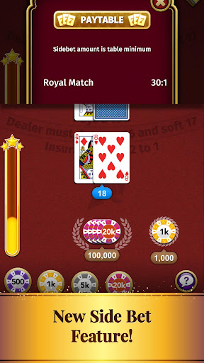 Blackjack Card Game screenshot 5