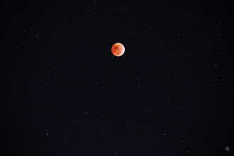 Photo: 2010 Lunar Eclipse