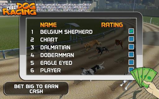 Crazy Dog Racing  {cheat|hack|gameplay|apk mod|resources generator} 4