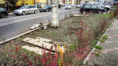 Photo: 2015.11.27 - Calea Victoriei - canale si gunoaie
