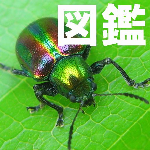 程式库与试用程式の昆虫図鑑 LOGO-記事Game